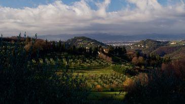 Fiesole hills