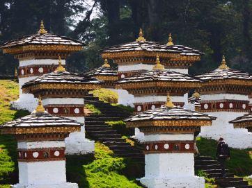 Vibrant temple tops