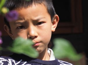 Boy behind leaf